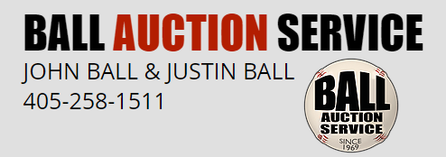 Ball Auction Service Logo