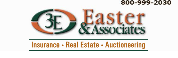 Easter & Associates, Inc. Logo