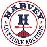 Harvey Plus Logo